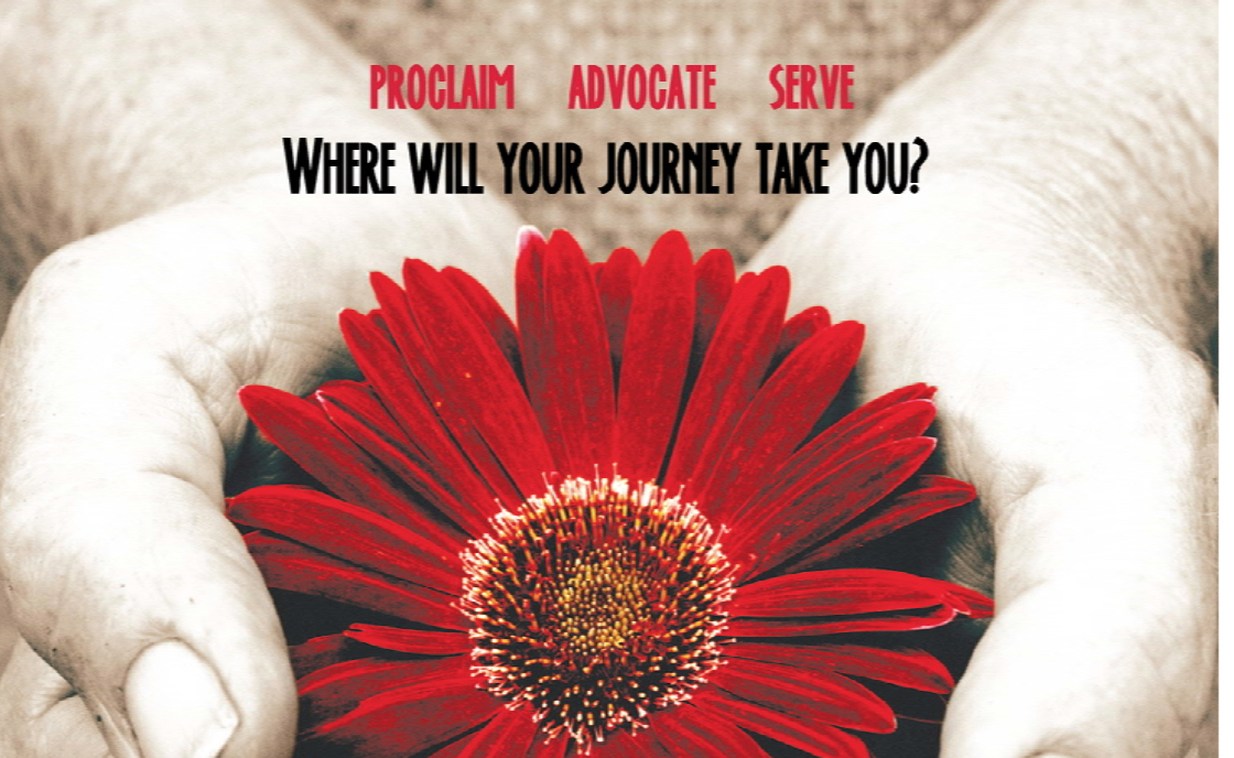 role of advocate Role of victim advocate sexual assault is the most under reported crime in our society and in the military while the department of defense prefers complete reporting of sexual assaults to activate both victims' services and law enforcement actions, it recognizes that some victims desire only medical and support services and no command or law enforcement involvement.
